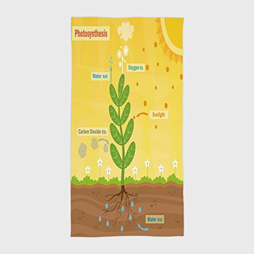 Cotton Microfiber Hotel SPA Beach Pool Bath Hand Towel Educational Cartoon Photosynthesis Oxygen Carbon Dioxide Sunlight and Water Decorative Earth Yellow Green Umber for Kids  Teens  and Adults