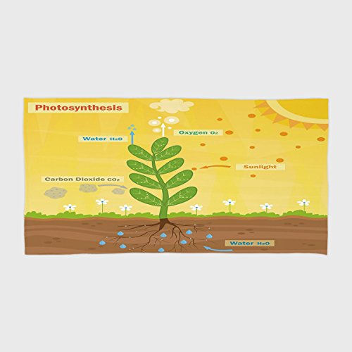 One Side Printing Hotel SPA Beach Pool Bath Hand Towel Educational Cartoon Photosynthesis Oxygen Carbon Dioxide Sunlight and Water Decorative Earth Yellow Green Umber for Kids Teens and Adults