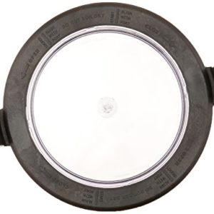 Zodiac R0445800 Lid with Locking Ring and Seal Replacement Kit for Select Jandy Pool and Spa Pumps